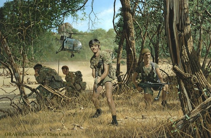 Image result for the rhodesian bush war