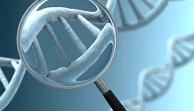 Company offers free DNA testing in Bulawayo