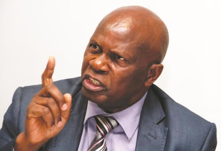 Basics price hikes expose the myths of Chinamasa's budget