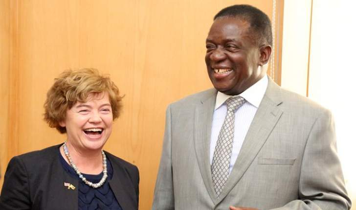 PETITION: We want to tell Mnangagwa to stop using our taxes to pay former white commercial farmers
