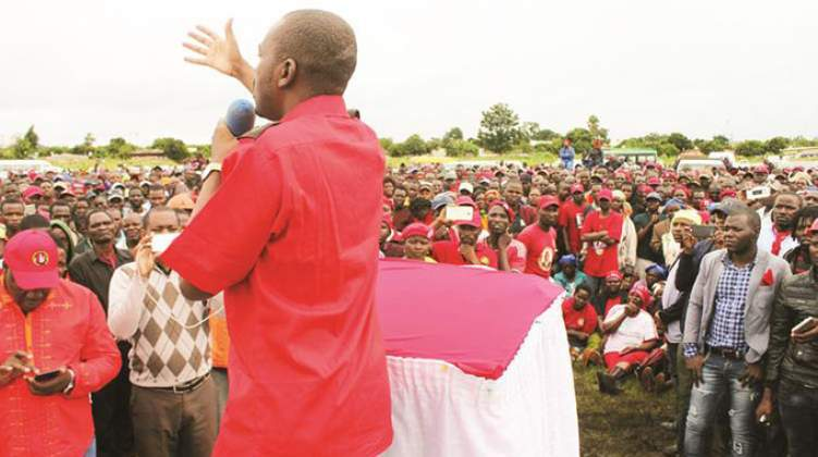 MDC-T records more cases of electoral violence than Zanu PF