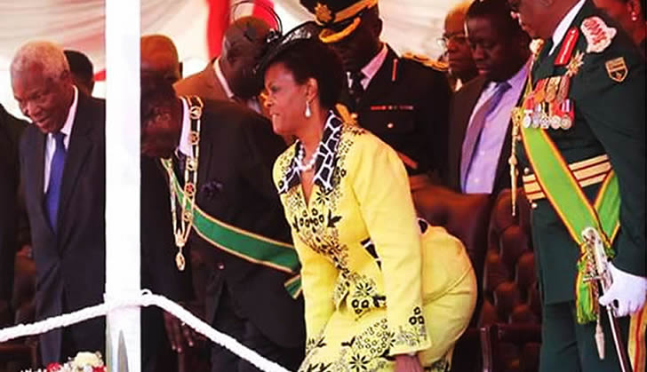 Mugabe Told To Stop Grace Bulawayo24 News
