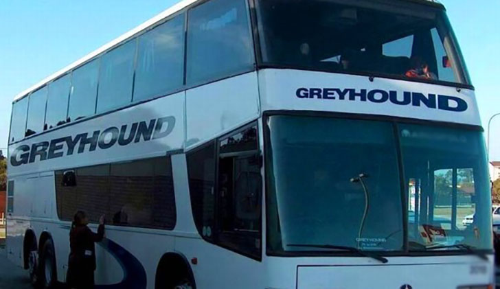 WATCH: Greyhound takes 40 hours from SA to Zim
