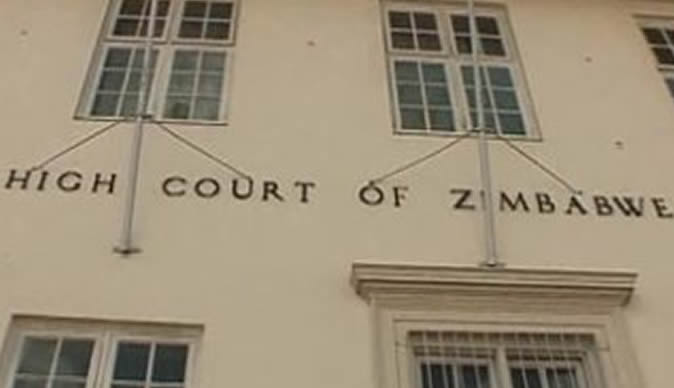 MDC-T lose party symbol case at High Court
