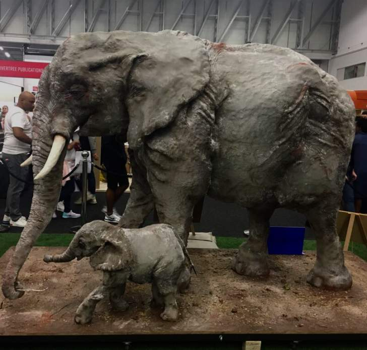 South African Elephant Baker Wins 'Cake Oscar'