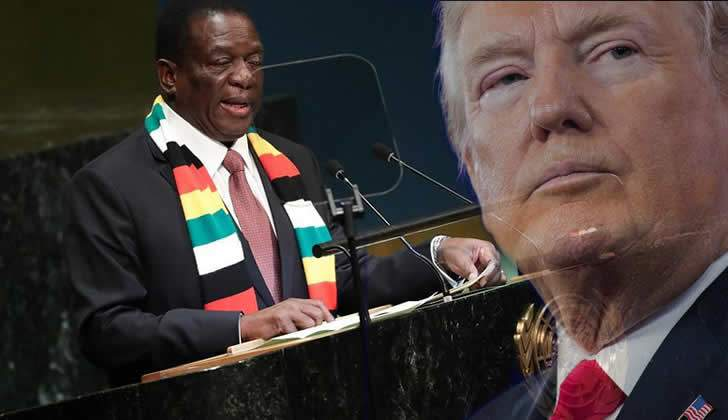 Donald Trump says 'looking into Zimbabwe right now'