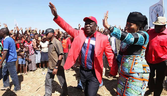 MDC Alliance 'hit the ground running' - not even Tsvangirai, the President, knows where to