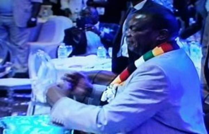 WATCH: Mnangagwa house mix released