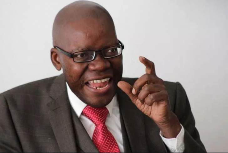 Biti, Ncube and Karenyi voted as Chamisa's VPs
